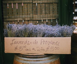 barrel, flower, and france image