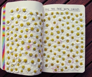 flowers, book, and daisy image