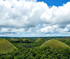 chocolate hills, forest, and bohol image