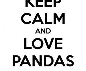 panda and keep calm image