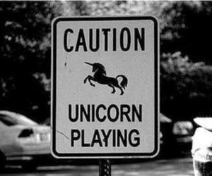 unicorn, caution, and black and white image