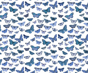 background, blue, and butterfly image