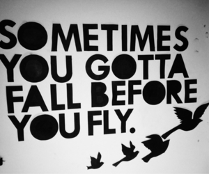 fall, quote, and fly image