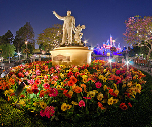 disney, flowers, and light image