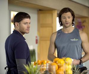 supernatural, Jensen Ackles, and sam winchester image