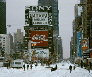 new york, city, and winter image