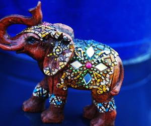 blue, cool, and elephant image