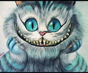 cat, magic, and smile image