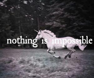 unicorn, impossible, and nothing image