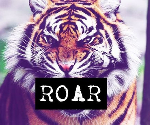 roar, tiger, and katy perry image