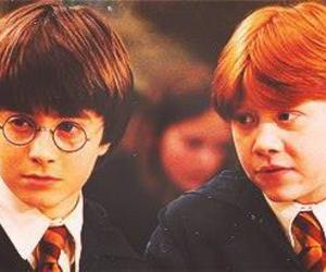 potter and ron image