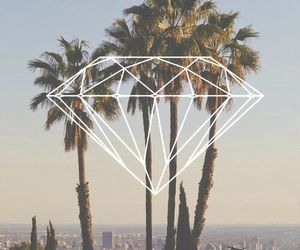 diamond, summer, and palms image