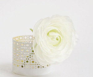decor, white, and flower image
