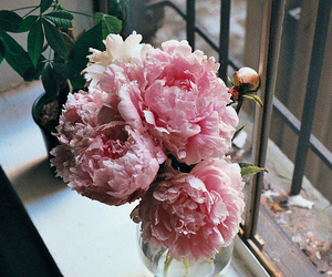 flowers, peonies, and blossom image