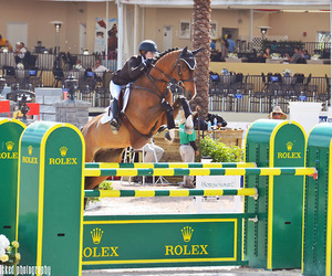 horse, riding, and rolex image