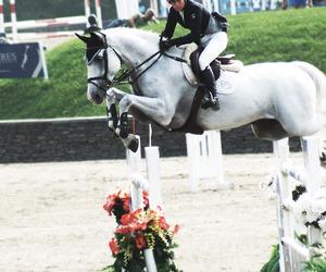 beautiful, girly, and horse image