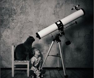 adorable, astronomy, and cat image
