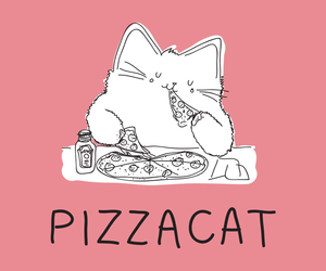 cat, meat, and pizza image