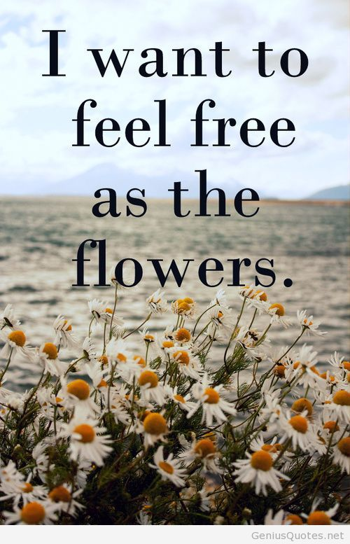 Feeling free quote shared by Quotes Sayings on We Heart It