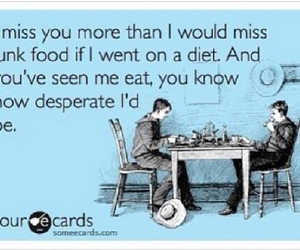 quote, love, and diet image