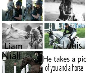 horse, 1d, and imagines image