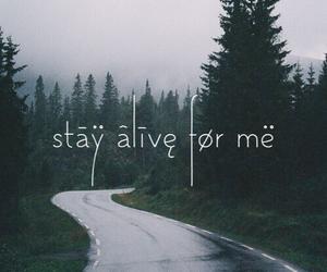 Lyrics, migraine, and stay alive image