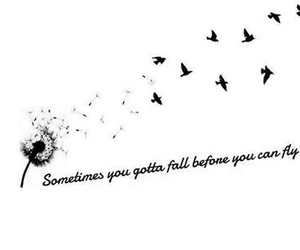 fly and quote image