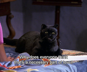 sabrina the teenage witch, quotes, and salem image