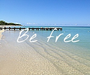 be free, beach, and free image