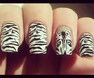 designs, nails, and zebra image