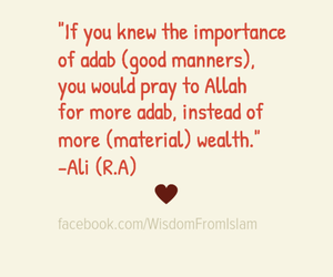 islam, ali, and manners image