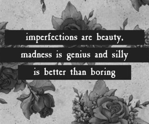 beauty, genius, and be silly image