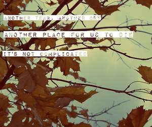 autumn leaves and ed sheeran image