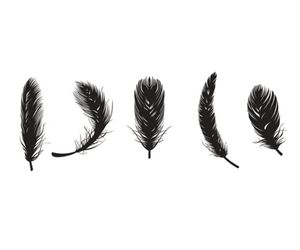 overlay and feather image
