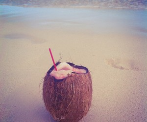 bahamas, coconut, and ocean image