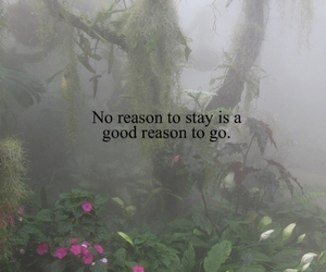 quote, forest, and go image