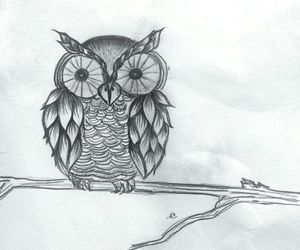 black and white, drawing, and owl image