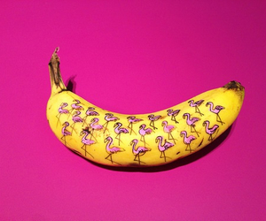 banana, pink, and flamingo image