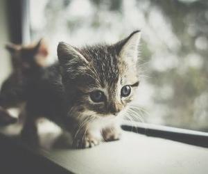 cute xxx image