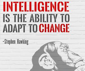 change, plan, and stephen hawking image
