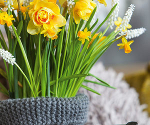 decor, tulips, and spring image