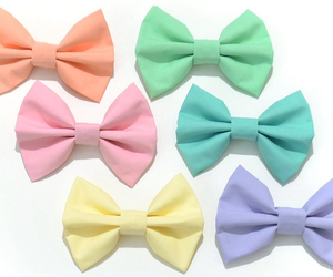 bow and pastel image