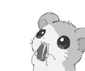 hamtaro, hamster, and kawaii image