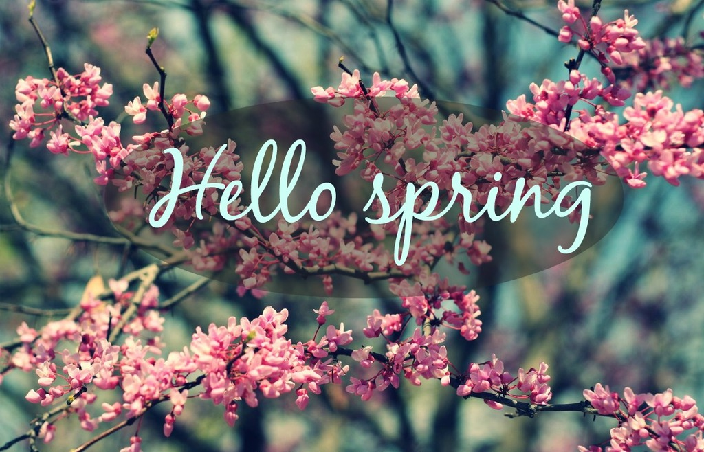 Hello spring uploaded by Jelena on We Heart It