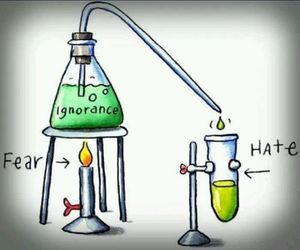 hate, fear, and ignorance image