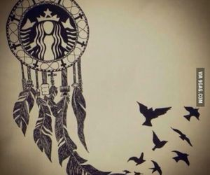 starbucks, bird, and dreamcatcher image