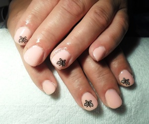 orange nails, oval nails, and butterfly nails image