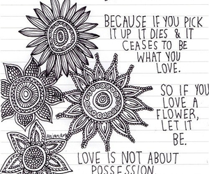 flower, love, and quotes image