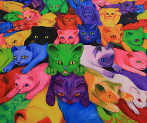 cat, colorful, and kitten image