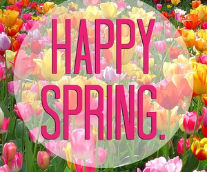 spring, flowers, and happy image